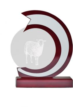 Médaille Tennis - NR11