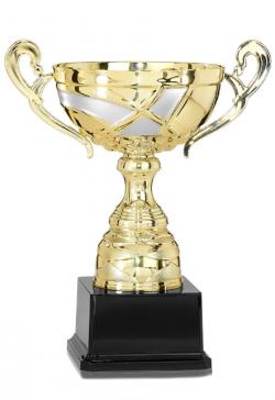 Trophée Football -18911