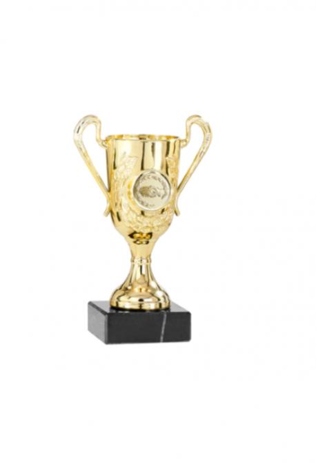 Trophée en Verre avec Applique : 13061