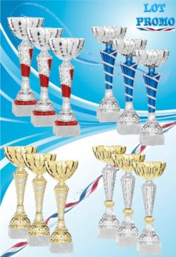 Trophée en Verre avec Applique : 13311
