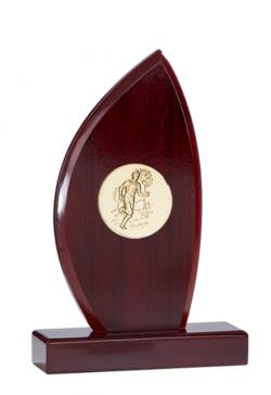 Lot de 20 trophees foot soulier des champions