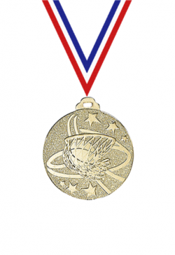 Lot de 100 Rubans pour Médaille