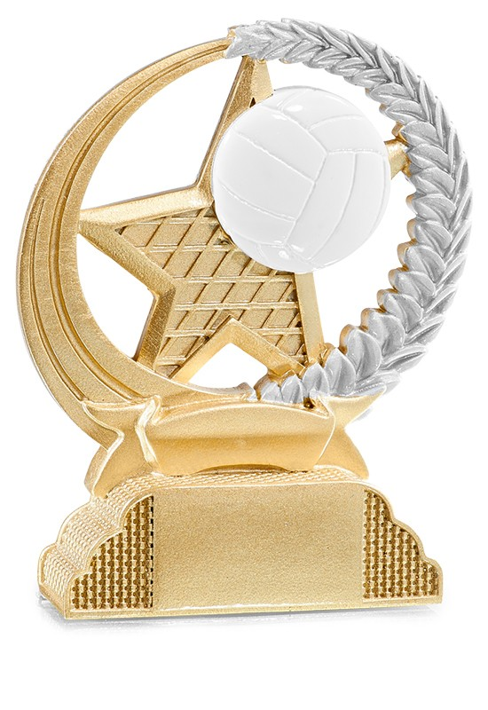 Trophée Volley-ball 31335