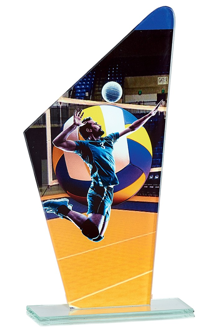 Trophée Volley-ball 66119